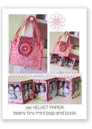 Mini_bag_and_book